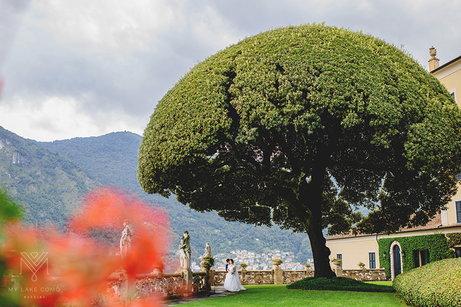 Villa-Balbianello-wedding-photo-under-iconic-tree-on-Lake-Como