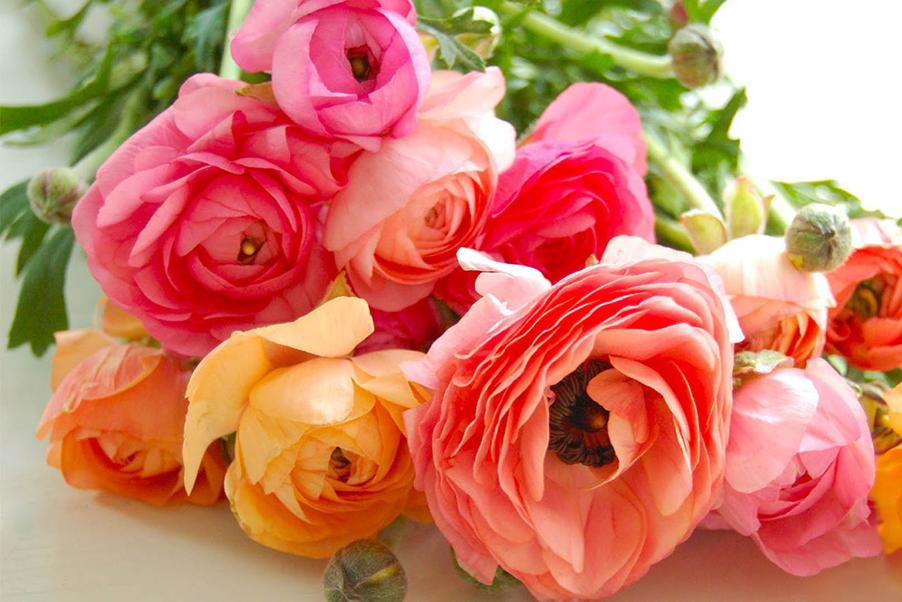 Orange-pink-fuchsia-yellow-ranunculus-ranunculaceae-floral-arrangement-for-weddings-on-lake-como